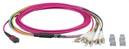 MTP®-F/LC 8-Fasermatrix Patchkabel OM4,LSZH erika-violett, 10m